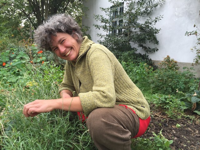 Hedda Brockmeyer Garten 2016